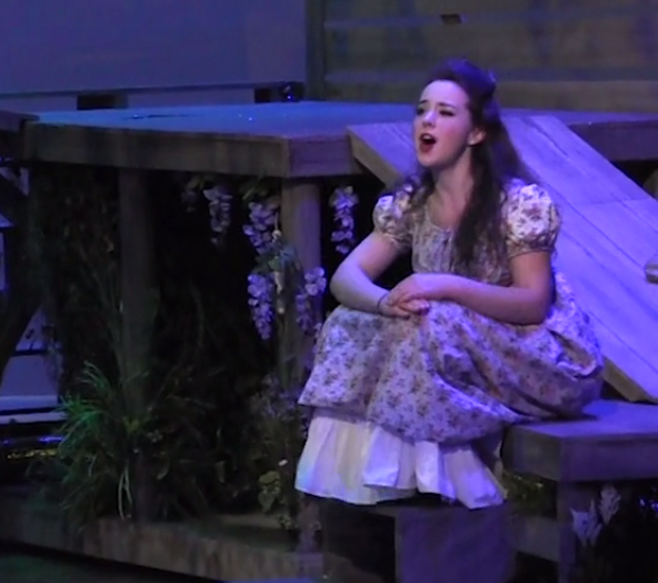 The Robber Bridegroom video preview