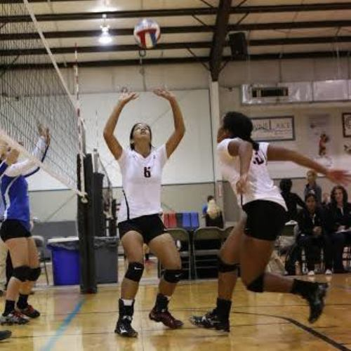Senior girls' volleyball captain Monica Dayao sets a ball at the Texas Tornados Tournament. (Courtesy of Monica Dayao)