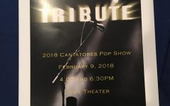 Annual Middle School Pop Show honors deceased artists