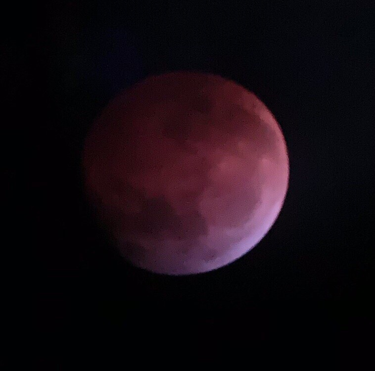 Students viewed the Super Blood Wolf Moon eclipse from the top of the Taub parking garage.