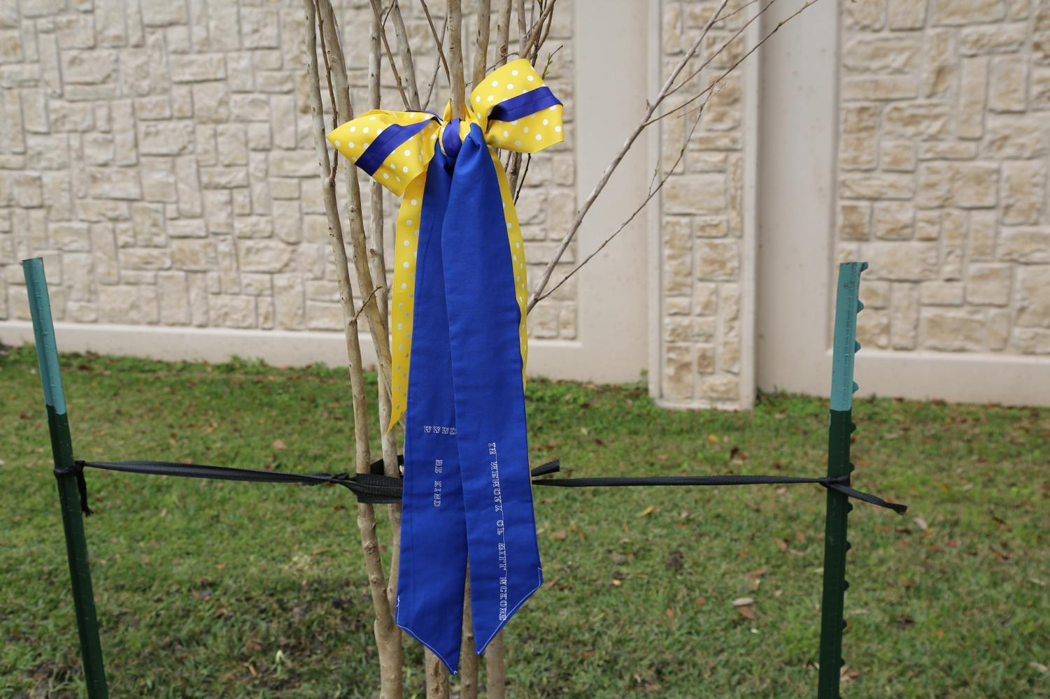 Ribbons were tied to the trees in Will's honor as well.