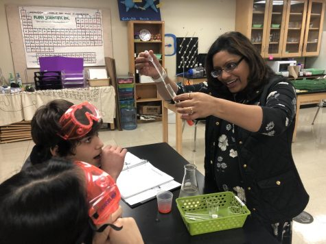 Mathur demonstrates the procedure for a strawberry DNA lab to her freshman class.