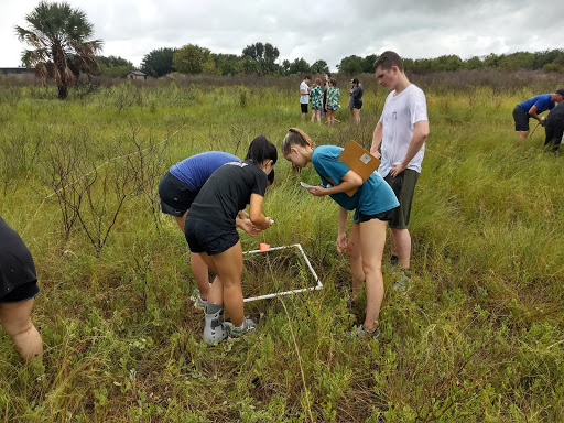 On+Sept.+16%2C+students+taking+AP+Environmental+Science+and+AP+Biology+went+to+Galveston+Bay+for+a+field+trip.+They+conducted+experiments+both+in+the+marshes+and+in+the+water.