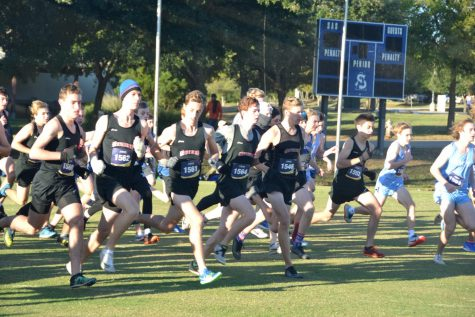 Boys', girls' cross country competes in South Zone