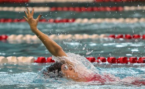 Video: Swimming and Diving compete in SPC South Zone Championships