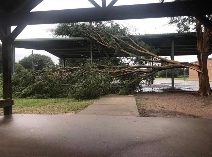 A tree, split in half by the storm, fell over a basketball court in Sugarland.